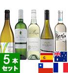 9月のワインバスケット 白ワイン5本セット(VY)